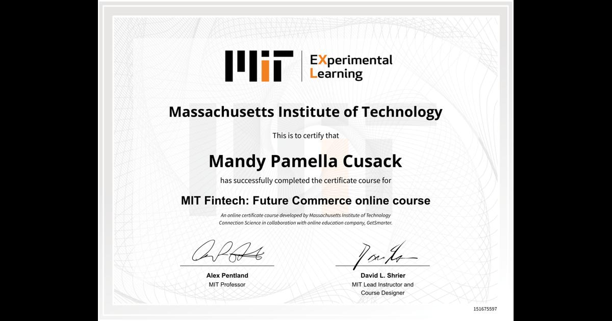 Mit Fintech Future Commerce Online Course Mandy Pamella Cusack